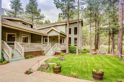 Flagstaff Single Family Home For Sale: 2489 Eva Circle