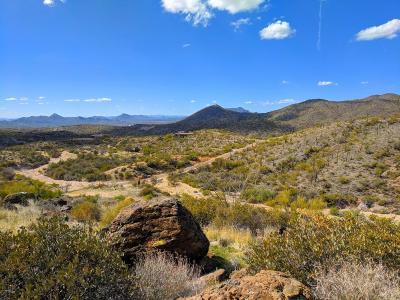 Scottsdale Residential Lots & Land For Sale: 39609 N Tom Morris Road