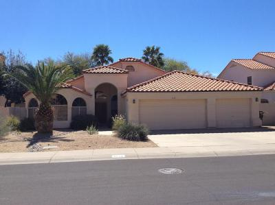 Scottsdale Rental For Rent: 9175 E Camino Del Santo Road