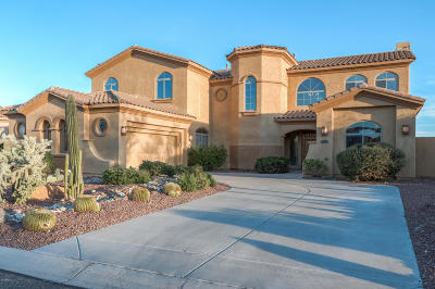 Superstition Foothills, Superstition Foothills At Gold Canyon Ranch, Superstition Foothills Lot 24 Single Family Home For Sale: 7191 E Calliandra Court
