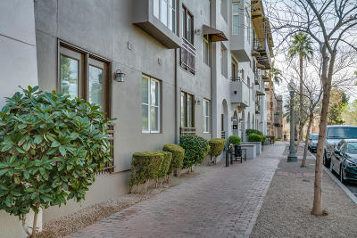 Phoenix Condo/Townhouse For Sale: 229 W Portland Street