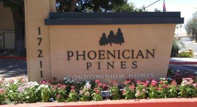 Phoenix Condo/Townhouse For Sale: 17211 N 35th Avenue #D210