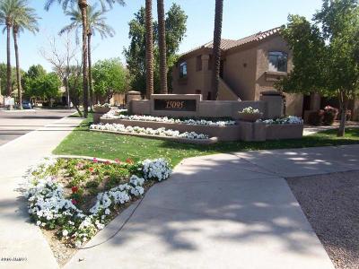 Scottsdale Rental For Rent: 15095 N Thompson Peak Parkway #3100