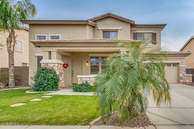Queen Creek Single Family Home For Sale: 18943 E Kingbird Drive