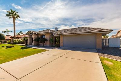 Tempe Single Family Home For Sale: 1135 E Sunburst Lane