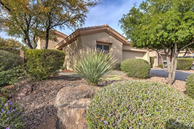 Anthem Single Family Home For Sale: 2340 W Turtle Hill Court