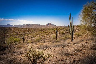 Fountain Hills Residential Lots & Land For Sale: 13217 N El Pueblo Boulevard