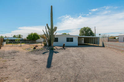 Sun City Mobile/Manufactured For Sale: 19039 N Dinero Road