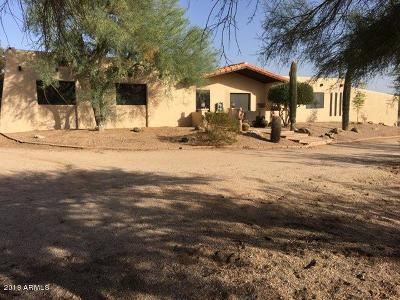 Scottsdale Single Family Home For Sale: 29525 N 76th Street N