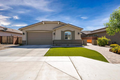 San Tan Valley Single Family Home For Sale: 1175 W Fir Tree Road