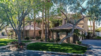 Chandler AZ Single Family Home For Sale: $1,500,000