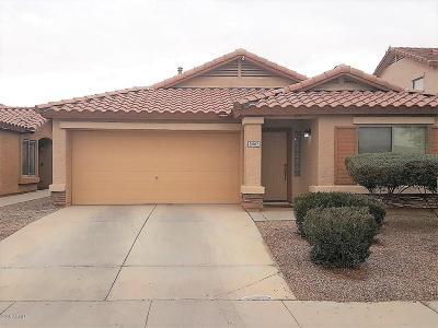 Maricopa Single Family Home For Sale: 21087 N Mac Neil Street