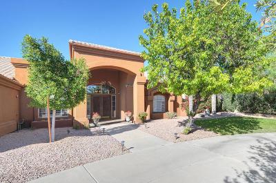 Scottsdale Single Family Home For Sale: 9032 E Carol Way