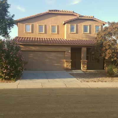 Maricopa Single Family Home For Sale: 42592 W Palmyra Lane