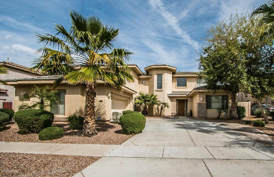 Gilbert Single Family Home For Sale: 4519 S Roy Rogers Way