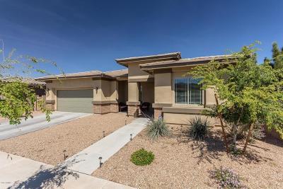 Queen Creek Single Family Home For Sale: 22732 E Munoz Street