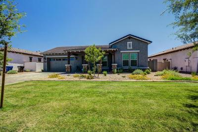 Surprise Single Family Home For Sale: 12867 N 145th Avenue