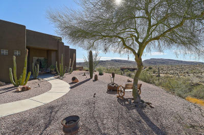 Phoenix Single Family Home For Sale: 3335 W Carriage Drive