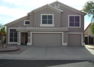 Gilbert Single Family Home For Sale: 687 S Sahuaro Drive