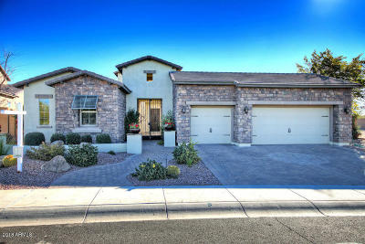 Cave Creek Single Family Home For Sale: 5415 E Hallihan Drive