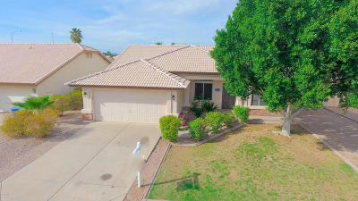 Mesa AZ Single Family Home For Sale: $269,900