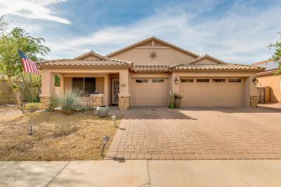 Casa Grande Single Family Home For Sale: 1315 E Judi Drive