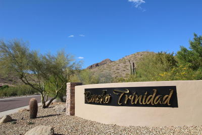 Scottsdale Residential Lots & Land For Sale: 12014 N 132nd Place