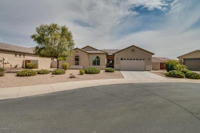 Chandler Single Family Home For Sale: 5225 S Opal Place