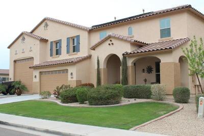 Litchfield Park Single Family Home For Sale: 18516 W Denton Avenue