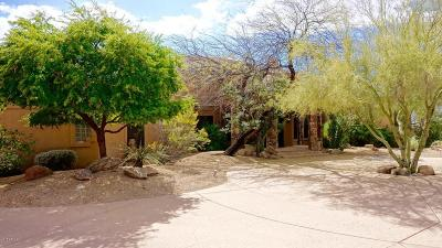 Scottsdale Single Family Home For Sale: 9643 E Casitas Del Rio Drive