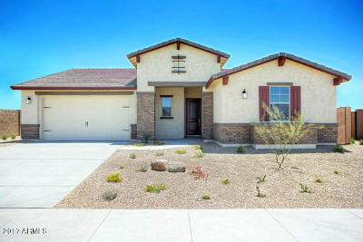 Goodyear Single Family Home For Sale: 18288 W Thunderhill Place