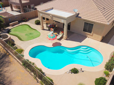Maricopa Single Family Home For Sale: 43273 W Griffis Drive