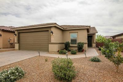 San Tan Valley Single Family Home For Sale: 431 W Flame Tree Avenue