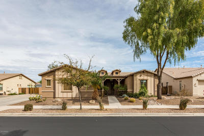 Queen Creek Single Family Home For Sale: 18764 E Druids Glen Road