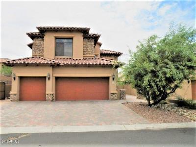 Mesa AZ Single Family Home For Sale: $365,000