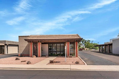 Mesa Commercial For Sale: 432 W 5th Place
