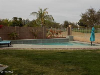 Avondale Single Family Home For Sale: 11910 W Monroe Street