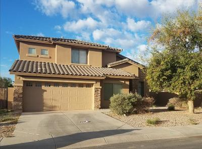 Casa Grande Single Family Home For Sale: 2555 E San Isido Trail