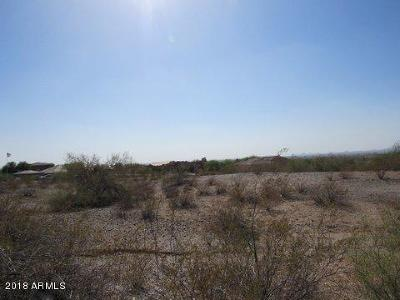 Goodyear Residential Lots & Land For Sale: 11390 S San Roberto Drive