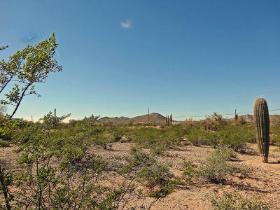 Queen Creek AZ Residential Lots & Land For Sale: $299,900