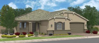 Maricopa Single Family Home For Sale: 41901 W Monteverde Court
