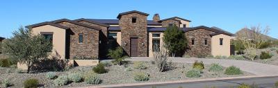 Glendale, Goodyear, Litchfield Park, Peoria, Sun City, Sun City West Single Family Home For Sale: 30408 N Sage Drive