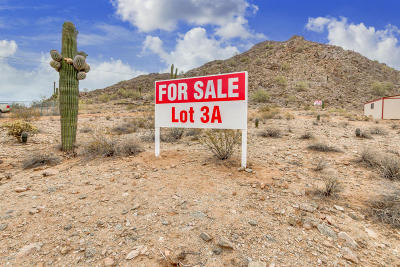 Queen Creek AZ Residential Lots & Land For Sale: $155,000