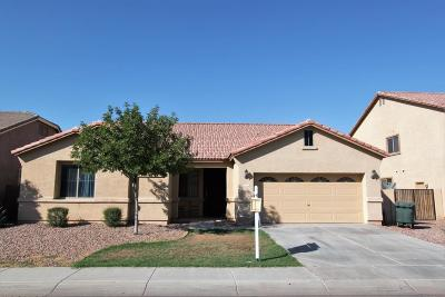 Casa Grande Single Family Home For Sale: 1582 E Palo Verde Drive