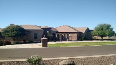 Queen Creek Single Family Home For Sale: 21894 S 199th Way