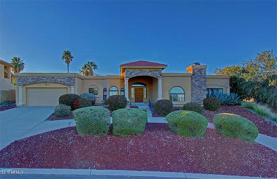 Fountain Hills Single Family Home For Sale: 15474 E Cavern Drive