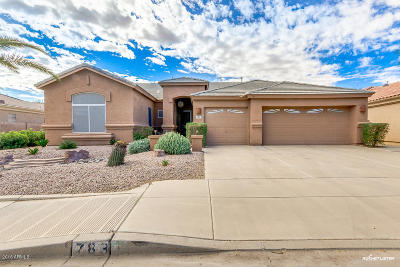 Chandler Single Family Home For Sale: 783 W Nolan Way