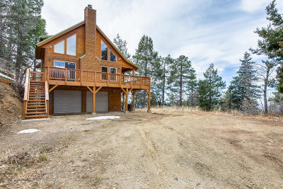 Prescott Single Family Home For Sale: 1011 E Tall Pine Trail