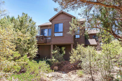 Payson Single Family Home For Sale: 1202 N Indian Paintbrush Circle