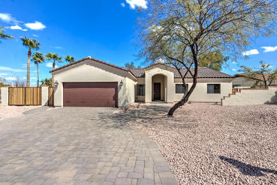 Fountain Hills Single Family Home For Sale: 15013 N Buena Vida Court